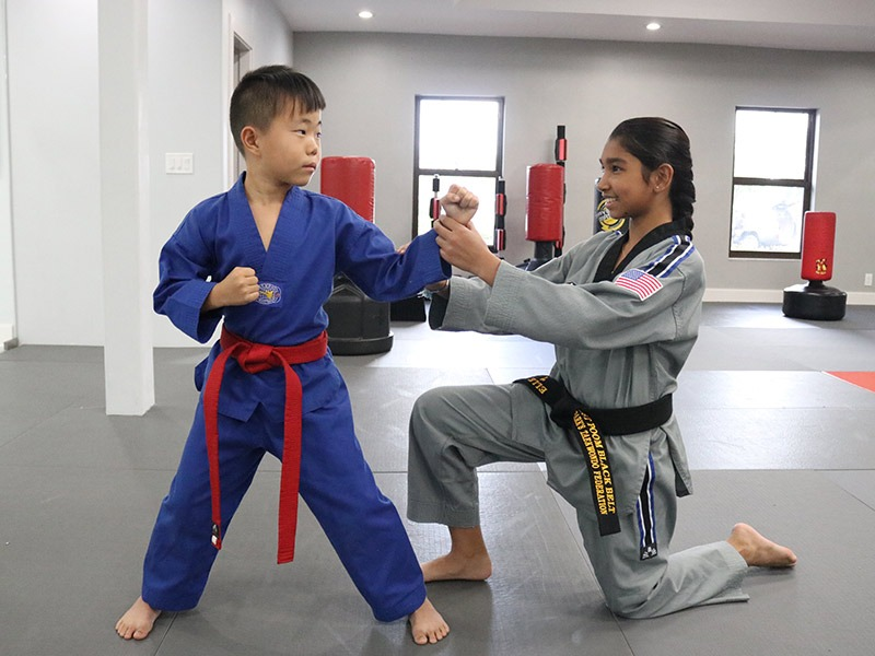 Martial Arts For Kids Plantation 1, Park's TaeKwonDo Coral Springs HQ