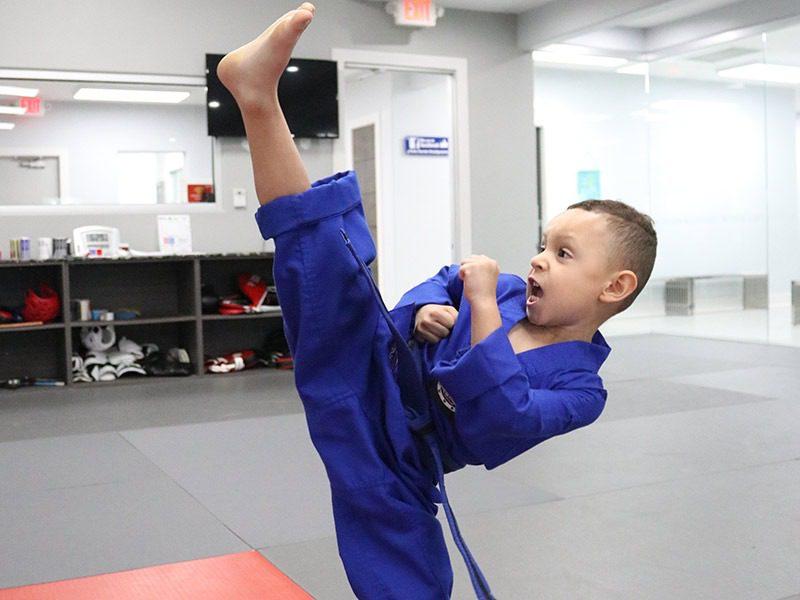 Martial Arts For Preschool Plantation, Park's TaeKwonDo Coral Springs HQ